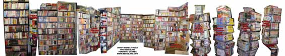 manga-shelves-final-565.jpg